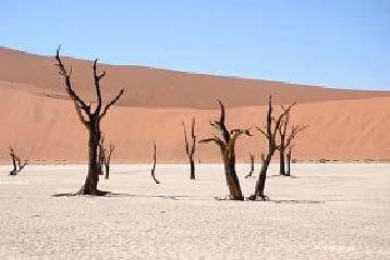 Namibia - wakacje w Afryce z biurem podróży LogosTour